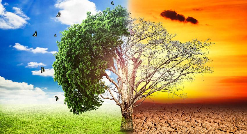 INFORME SOBRE EL CAMBIO CLIMÁTICO