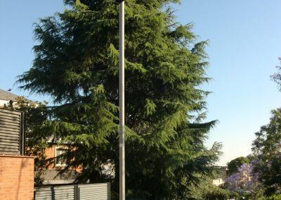 Proyecto de obra para tala de árboles en Jardín. Proyecto de Idoneidad técnica