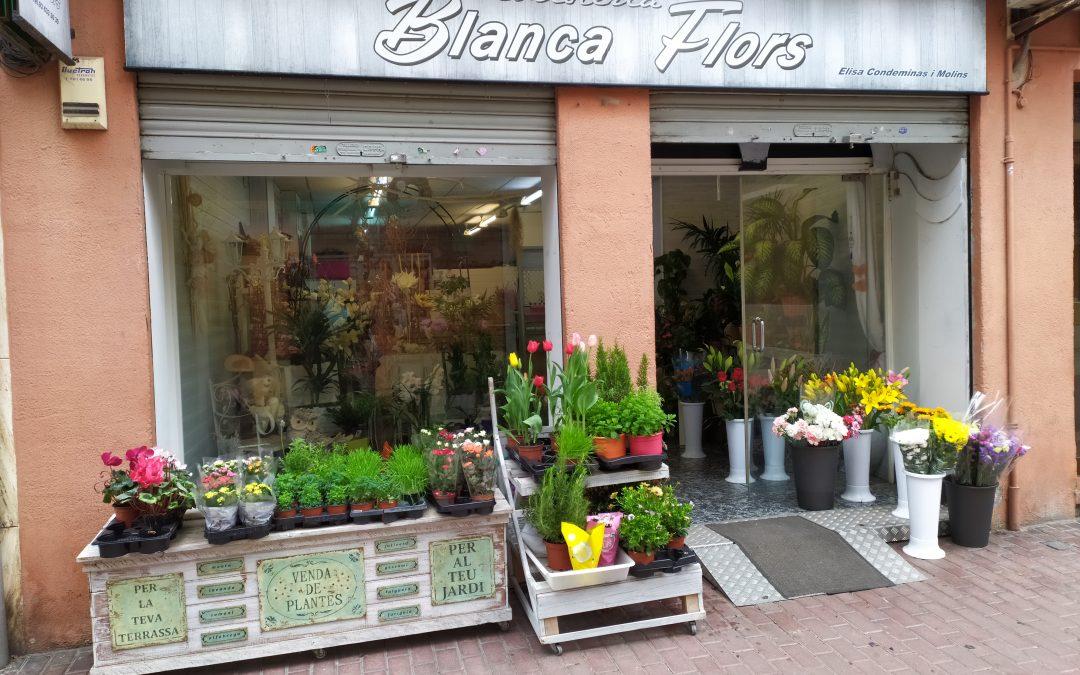 Licencia de actividad para floristería