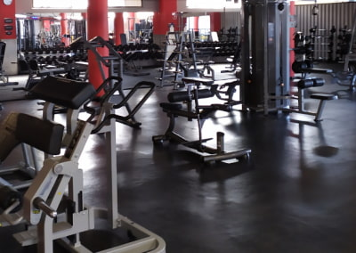 Licencia de actividad para gimnasio | Centro deportivo